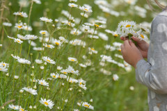 Lillel Tõrvasel (Reia Kiranen)